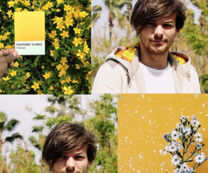 aesthetic, louis tomlinson, and one direction wallpaper image