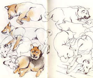 art, creative, and dog image