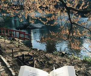 book, reading, and autumn image