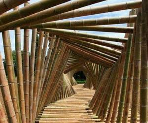art, bamboo, and gestalt image