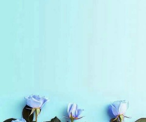 background, blue, and flowers image