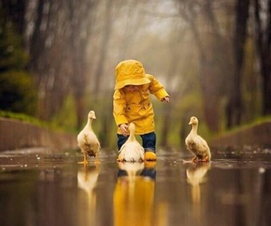 duck, rain, and baby image
