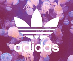 adidas and Logo image