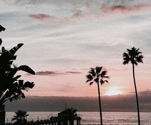 beach, theme, and sunset image