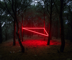 red, forest, and neon image