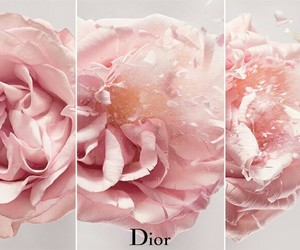 dior and flor image