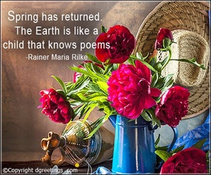 quotes, spring, and beautiful images image