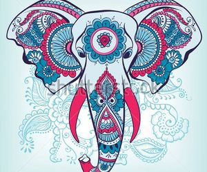 elefante, colors, and mandala image