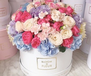 flowers, nice, and romantic image