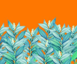 leaves, patterns, and orange image