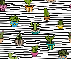 cactus, patterns, and plant image