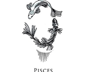 horoscope, pisces, and astrology image