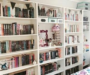 book and book shelf image