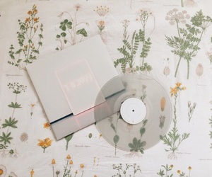 aesthetic, music, and flowers image