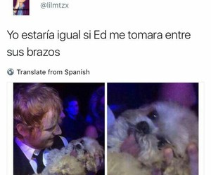 frases, phrases, and ed sheeran image