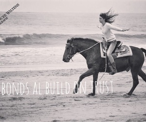 horse, Cowgirl, and quote image