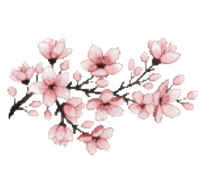 cherry blossom, png, and render image