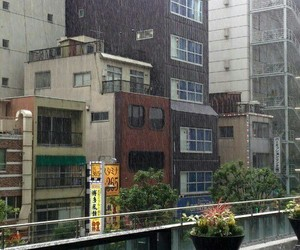 rain, japan, and building image
