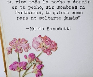 poesia, poetry, and quotes image