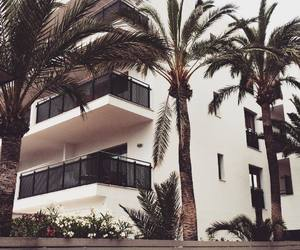 apartment and palm trees image