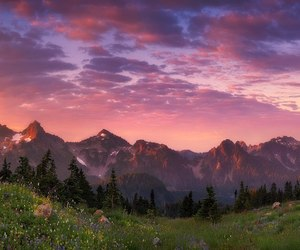 flowers, magic, and mountains image