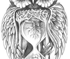 drawing, hourglass, and owl image