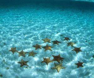 sea, stars, and ocean image