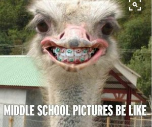 funny, school, and picture image