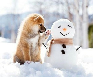 puppy, snowman, and snow image