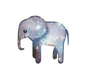 elephant and galaxy image