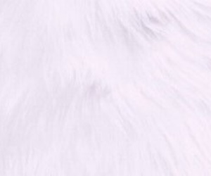 fur, glam, and header image