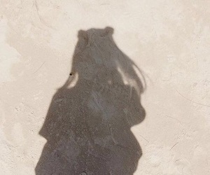 girl, shadow, and aesthetic image