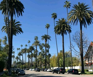 Hot, summer, and los angeles image