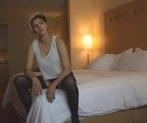 bed, boudoir, and shorthair image