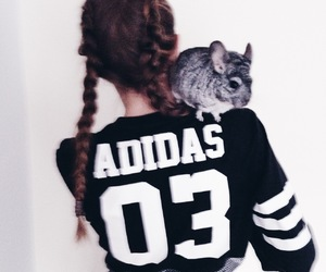 adidas, animal, and beauty image
