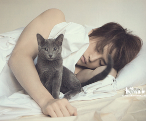 jaejoong, cat, and jyj image