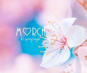 blossom, heart, and march image