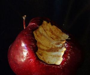 decay, poison apple, and rotten image