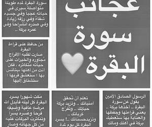 arabic, quran, and arabic words image