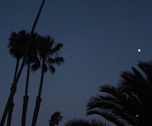 blue, dark, and night image