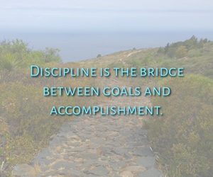 aim, bridge, and discipline image