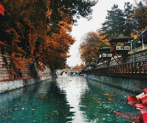 autumn and river image