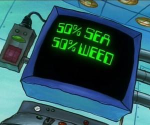 weed, sea, and spongebob image
