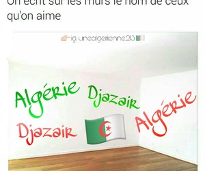 dz, forcing, and algerie image