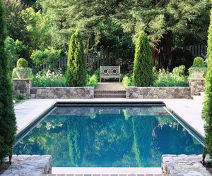 pool, garden, and perfect image