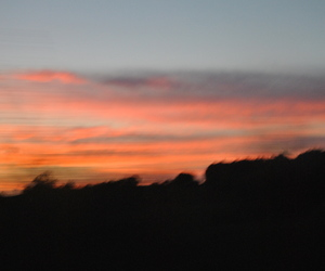 blur, sunset, and nature image