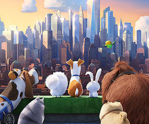pets, animation, and secret life of pets image