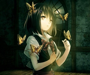 anime, butterfly, and girl image