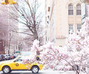 new york, ny, and pastel image