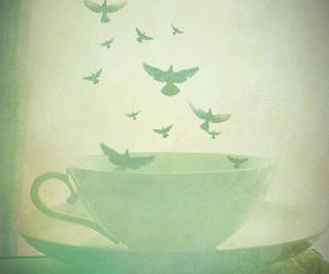 birds and cup image